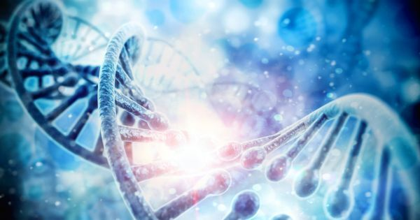 Is Getting Genetically Engineered a Human Right?