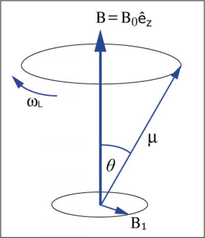 Magnetic moment precessing in a magnetic field. Atoms are often described as two-level systems, and their dynamics is identical to a magnetic moment driven by time-dependent magnetic fields. (Courtesy of Prof. Wolfgang Ketterle).