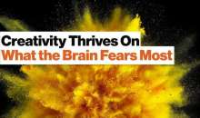 The Neuroscience of Creativity, Perception, and Confirmation Bias